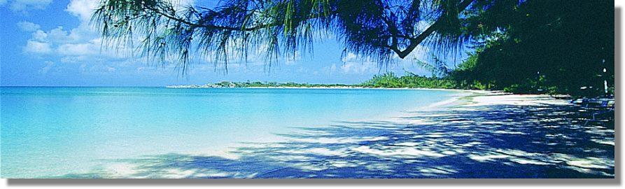 Bahama Insel Kreuzwort