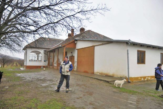Arad Rumänien arad weinberge weingüter banat rumänien kaufen immobilienmakler