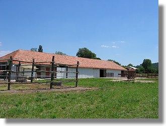 farm in ungarn kaufen vom immobilienmakler landwirtschaftsbetriebe ungarn. Black Bedroom Furniture Sets. Home Design Ideas